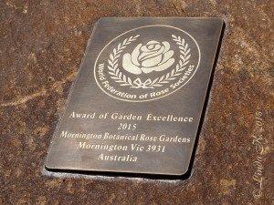 award4